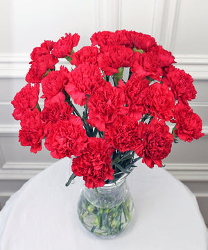 St Valentine's Red Carnations - Fineflora Flowers