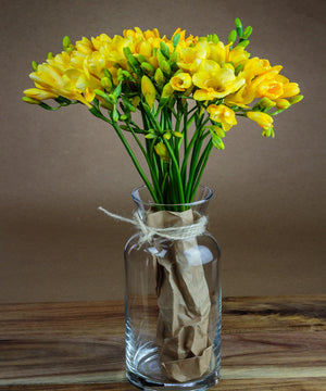 """Easter"" Yellow Guernsey Freesias - Fineflora Flowers"