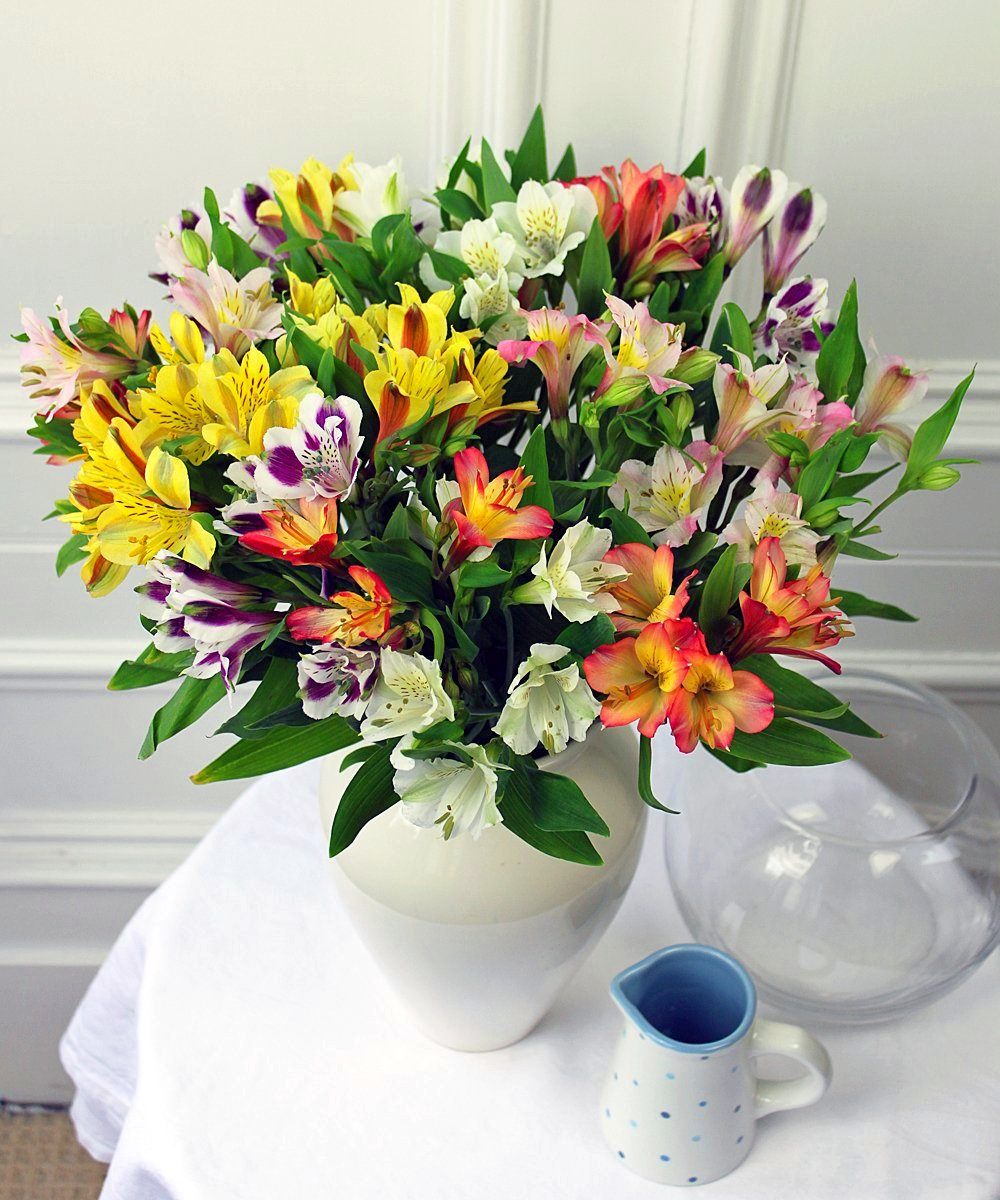 Order Beautiful Guernsey Alstroemeria Online For Uk London Delivery Guernsey Flowers By Post