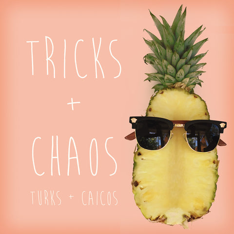 Tricks + Chaos black and gold Argentum sunglasses