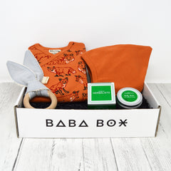 Baby Gift Ireland - Woodland Fox - Baba Box