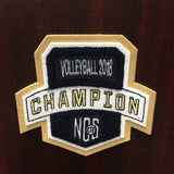 Volleyball Champion Patch
