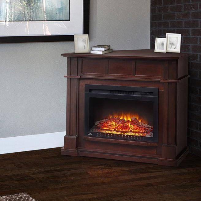 Napoleon The Bailey Electric Fireplace and Mantel | NEFCP24-0116E