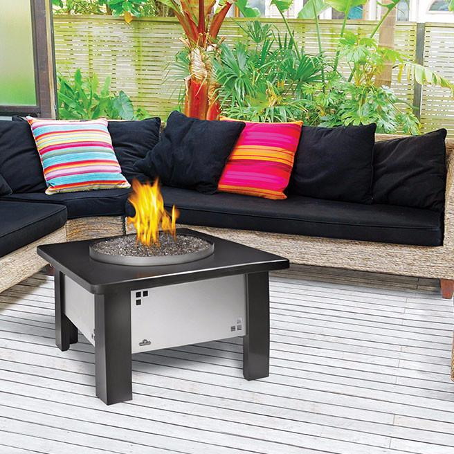 Napoleon Outdoor Patioflame Stainless Steel Outdoor Gas | GPFGP-2