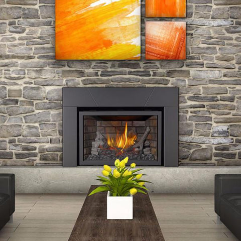 Napoleon Infrared XIR3NSB Direct Vent Deluxe Gas Fireplace Insert with Logs