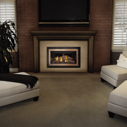Napoleon Inspiration ZC Direct Vent Gas Fireplace Insert | GDIZC-NSB