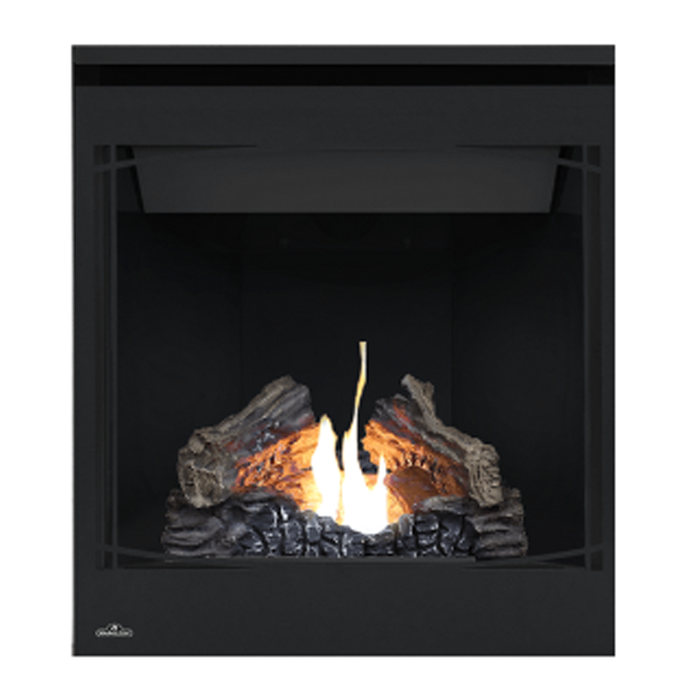 Napoleon Black Zen Decorative Front | Z42F |