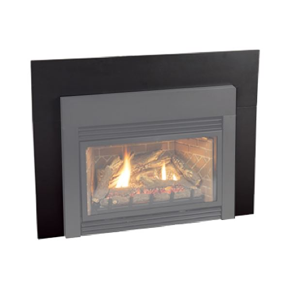 Empire Loft Small Direct Vent Gas Insert | DVL25IN