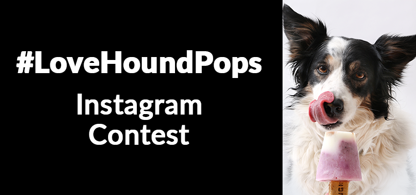 Flying Hound #LoveHoundPops Instagram contest