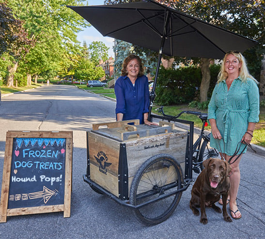Flying Hound Cargo Bike - Treat Trike with Ice Box