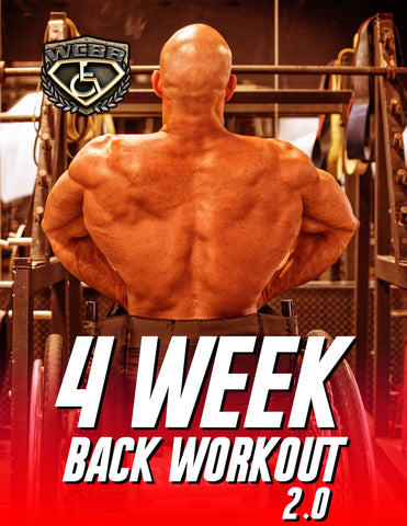 Back Workout 2.0