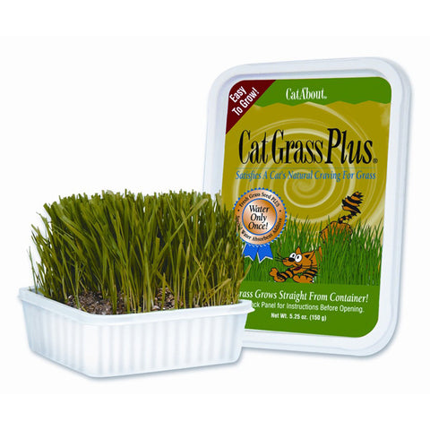 Gimborn - Cat Grass Plus