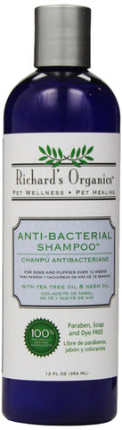 SYNERGY - Anti-Bacterial Shampoo with Tea Tree Oil and Neem Oil