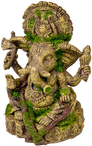 EXOTIC ENVIRONMENTS - Ganesha Statue with Moss