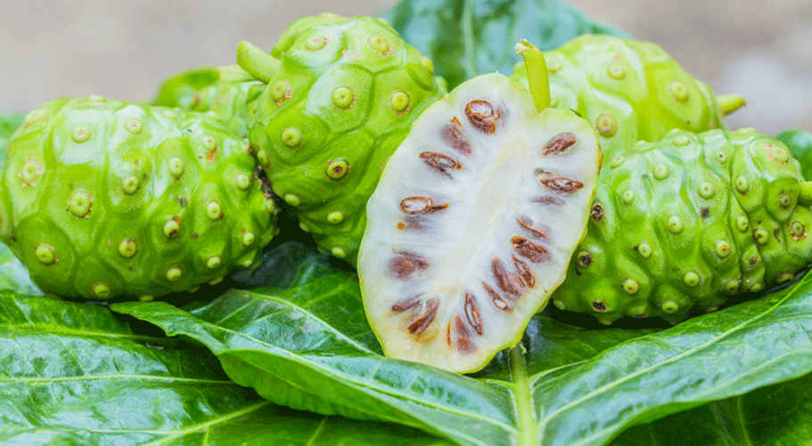 10 Amazing Health Benefits of Noni