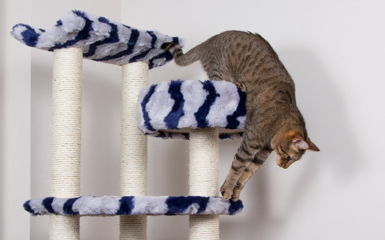 Cat climbing off of large cat tree.