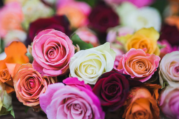 5 Reasons Giving Flowers Will Brighten Someone's Day