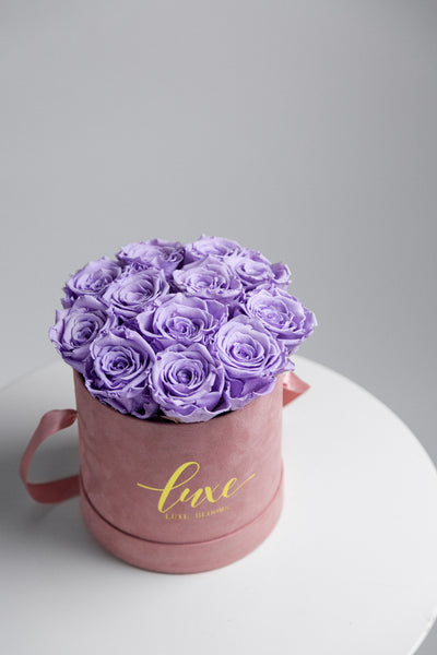 12 INFINITY ROSE BOX (SUEDE BOX)
