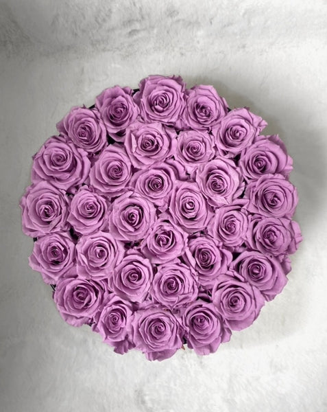 22 Long Lasting Infinity Roses (purple)
