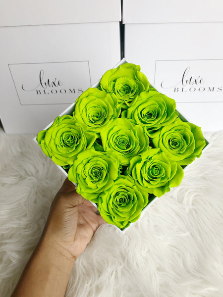 Infinity Green Apple | Luxe Blooms