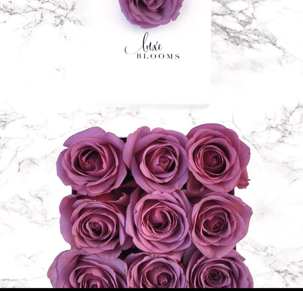 PURPLE Mini | Luxe Blooms