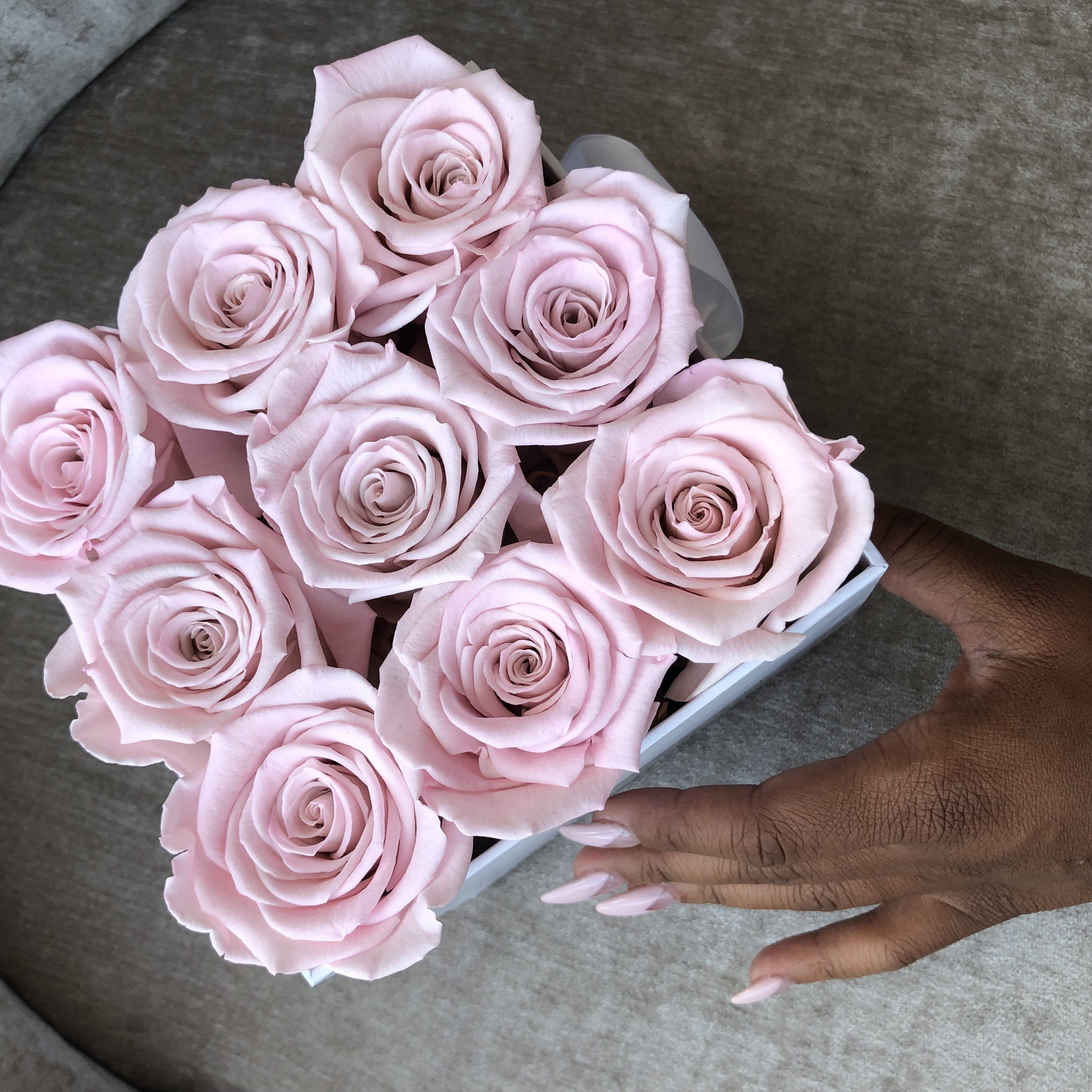 Infinity Pink | Luxe Blooms