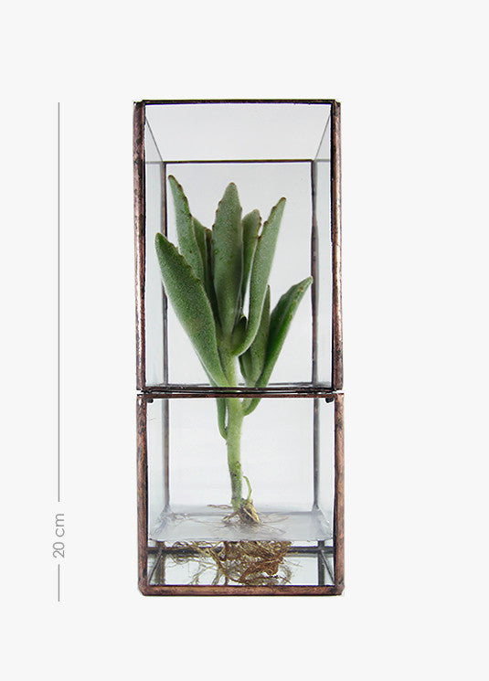 Glass Garden Vase - Tall