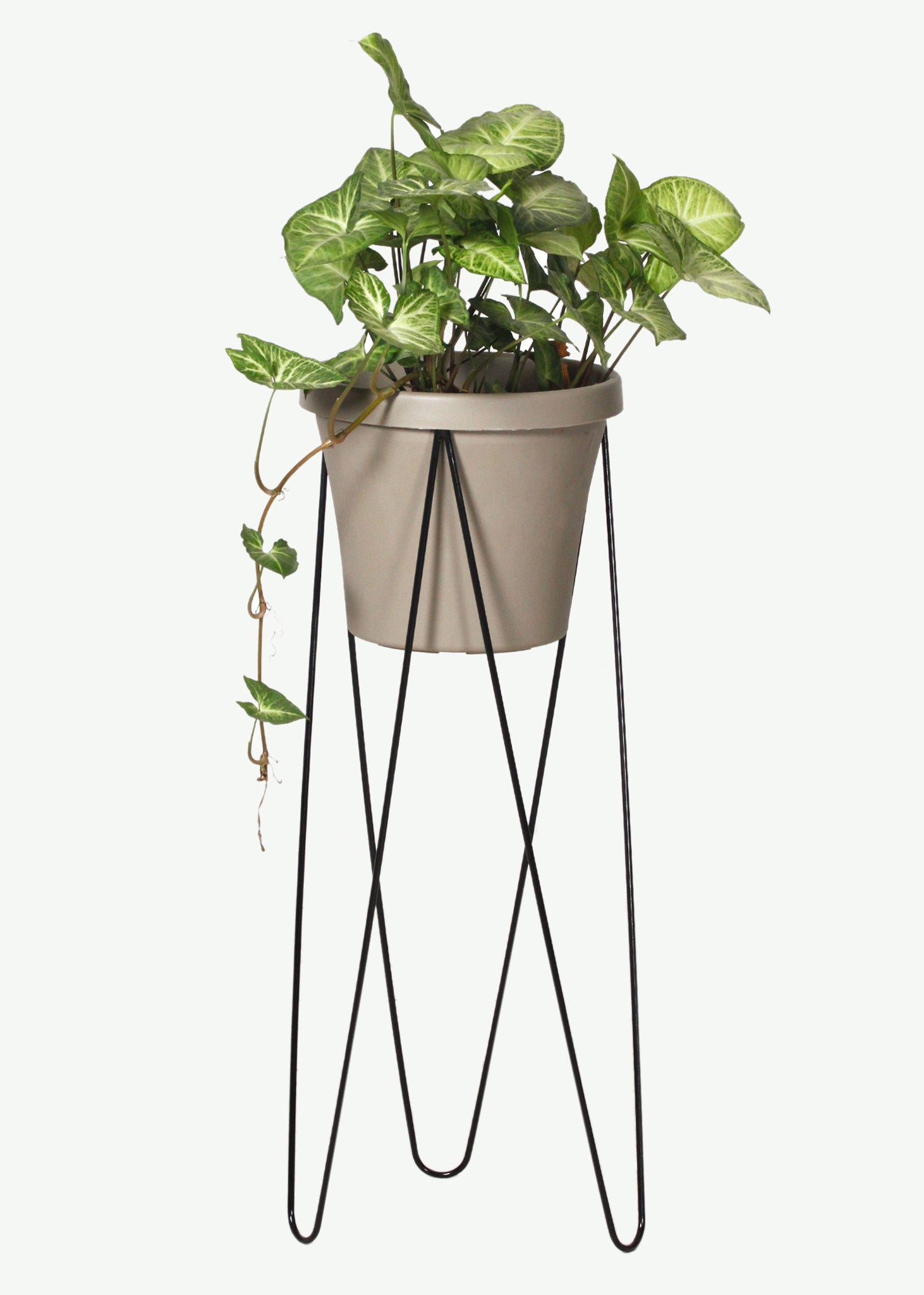 Hairpin Pot Plant Stands