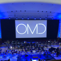 An Orchestral Delight
