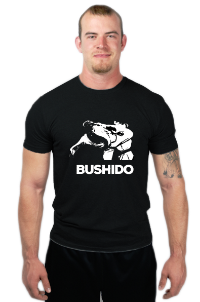 BUSHIDO HEAD KICK