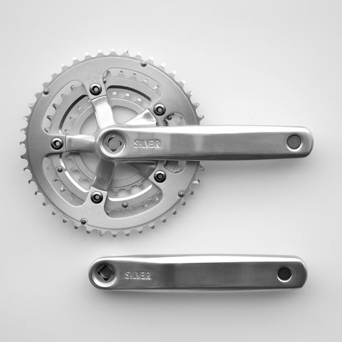 Silver Chainring Guard