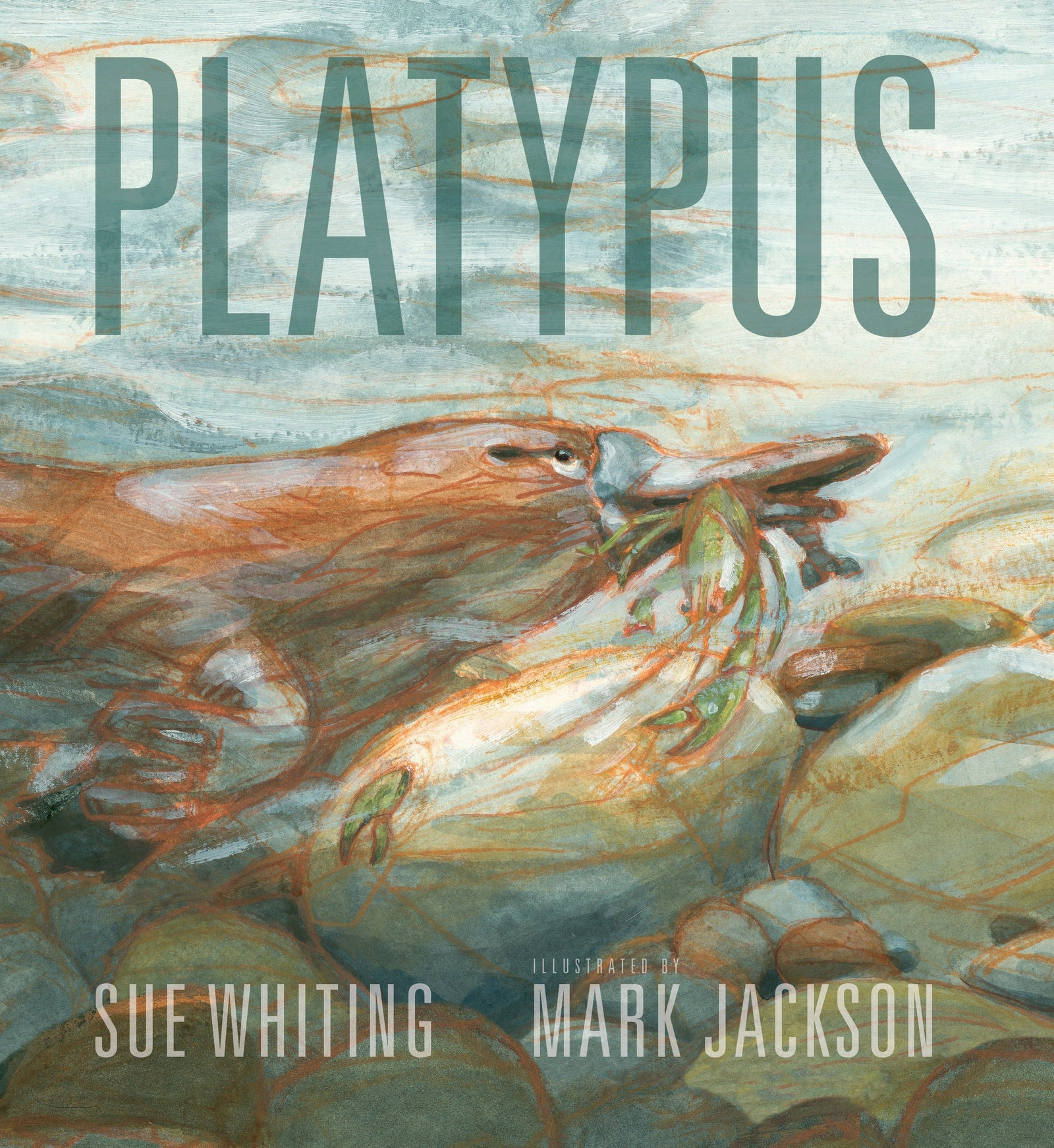 Book - Platypus, illustrated, emotional
