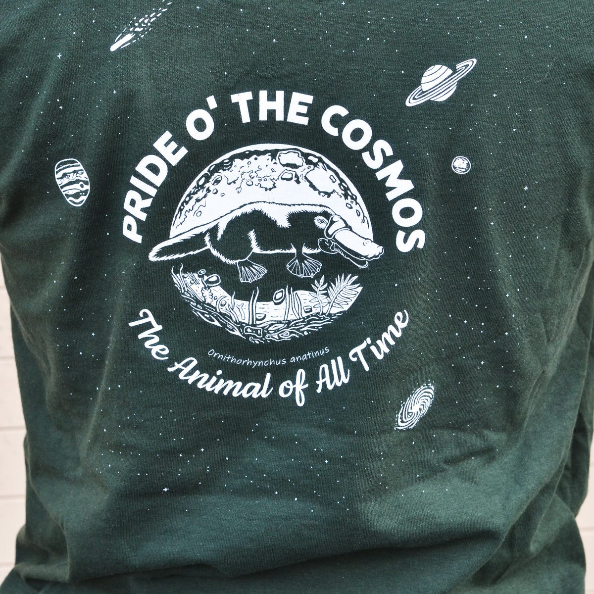 Platypus: Pride O' the Cosmos Long Sleeve - Green