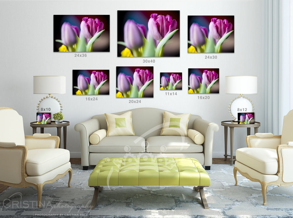 Gallery Wall Display Size Guide