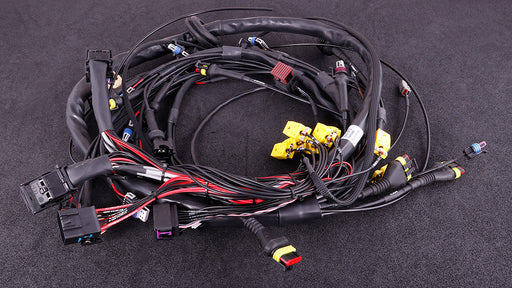 MAXXECU GM LS terminated engine harness - f-tech-motorsport-shop
