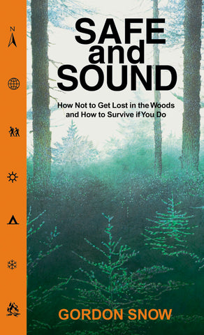 Safe and Sound (eBOOK)