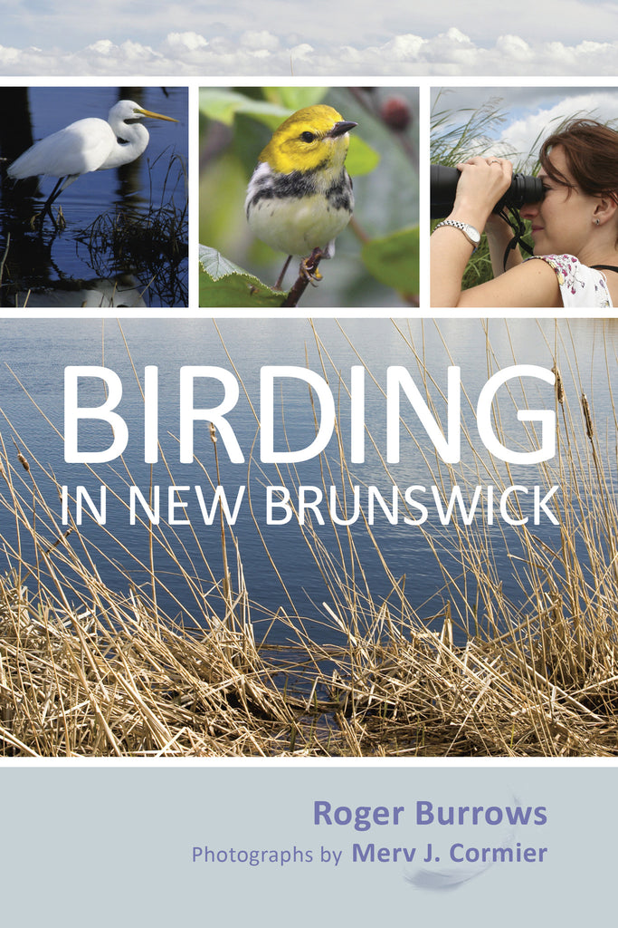 Birding in New Brunswick