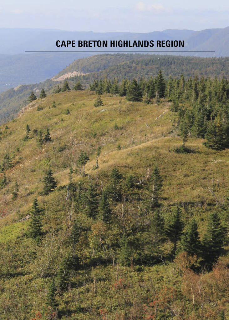 Hiking Trails of Cape Breton, 2nd Edition (eBOOK)