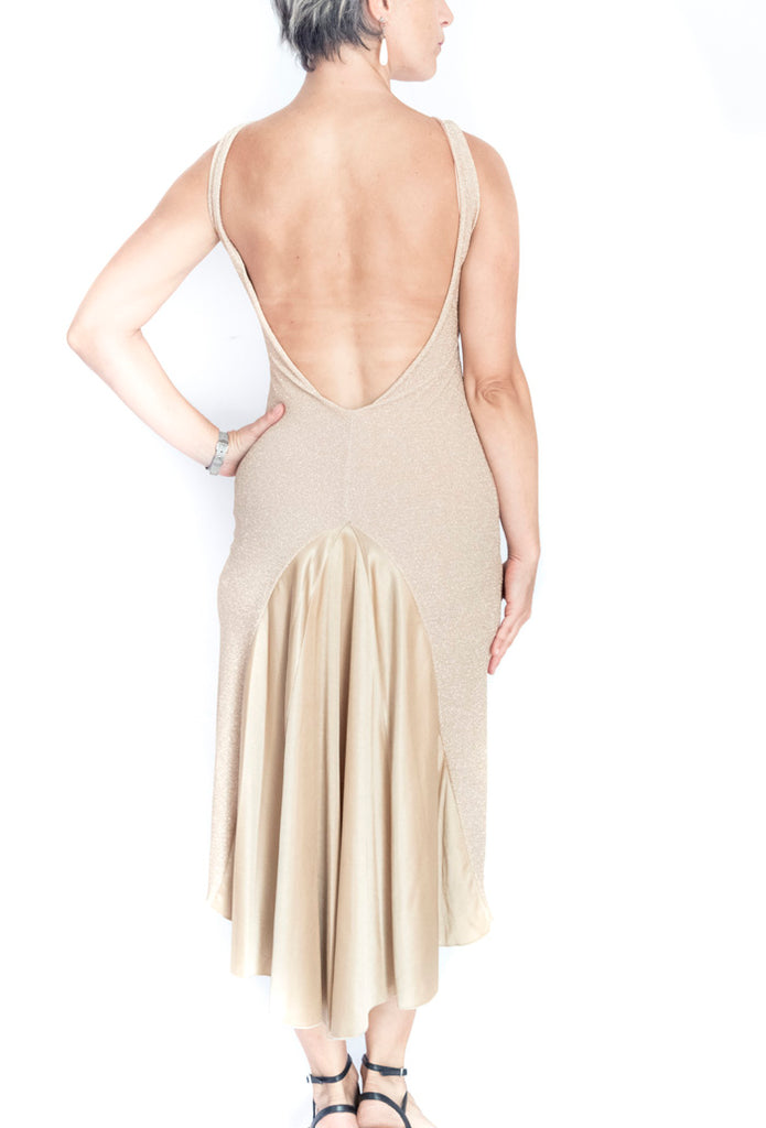 DRESS - Maria Jose (a version of our Maria dress but with closed front) in its shiny version