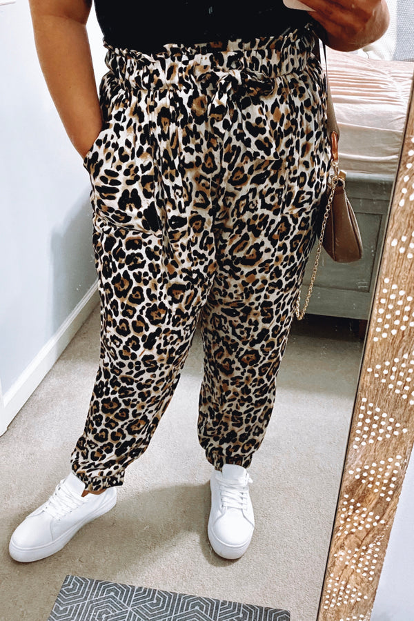 Dare to Be Wild Leopard Print Pants | Curve - Madison and Mallory