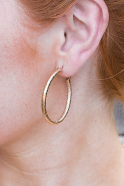 OS / Gold Shine On Glitter Earrings - Madison + Mallory