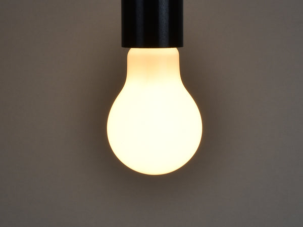 B22 LED Filament Bulb | A19 | Milky - Vendimia Lighting Co.