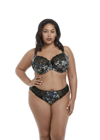 Elomi Morgan Brief 4115 MIdnight Garden