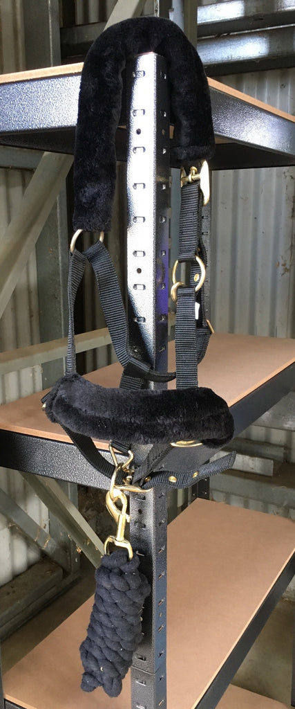 Nylon Halter and Lead Set