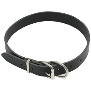 Dog Collar Leather Heavy Duty Size 2