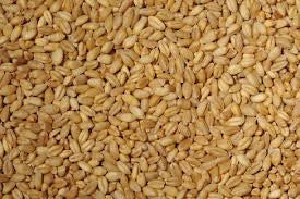 5 Bags Peckish Wheat (20kg)