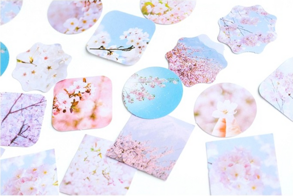 Sakura Decorative Paper Stickers 6