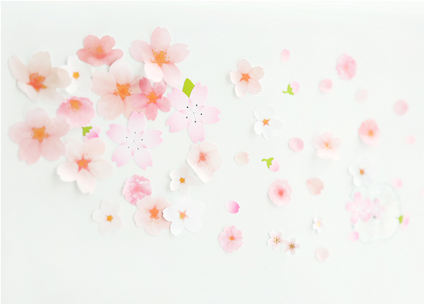 Japanese Sakura Cherry Blossom Stickers 10