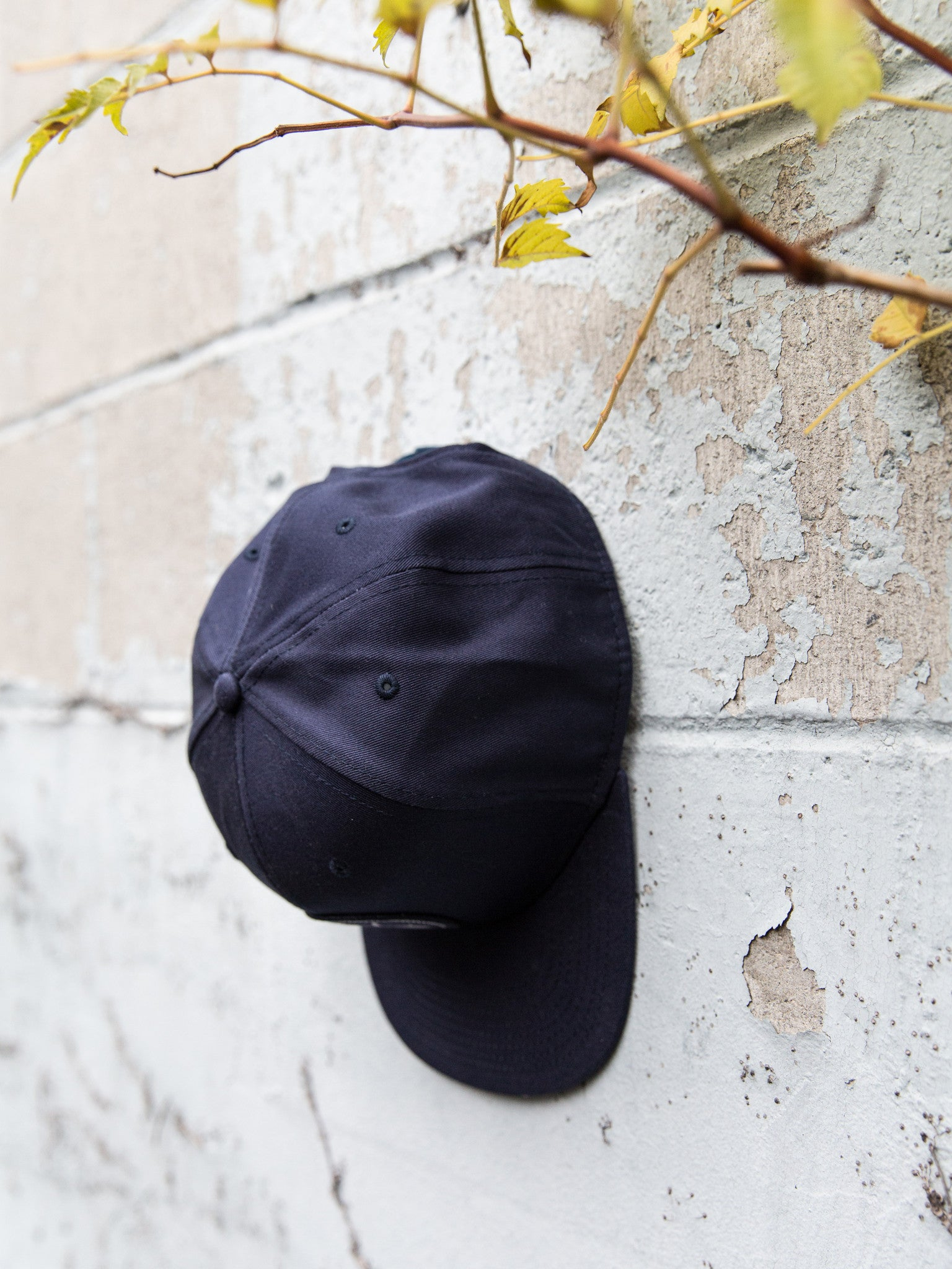 Navy Snap Back (Circle logo)