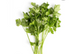 Organic Parsley, 1 Bunch